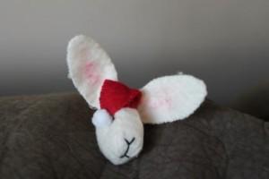 Festive bunny.JPG.opt418x278o0,0s418x278