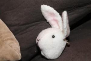 handmade bun.JPG.opt418x278o0,0s418x278