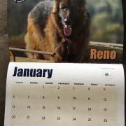 Calendar 2 19